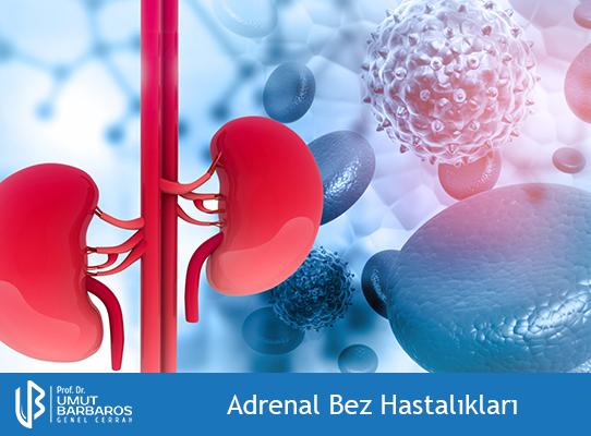 Adrenal Bez (Böbrek Üstü Bezi) Hastalıkları